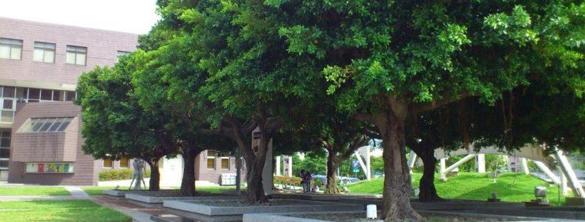 豐原葫蘆墩文化中心