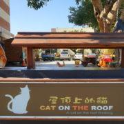 雲林屋頂上的貓