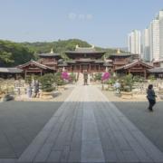 西蓮園,香港西蓮園