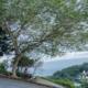 望景鞦韆,馬祖盪鞦韆,南竿鞦韆,馬祖隱藏景點